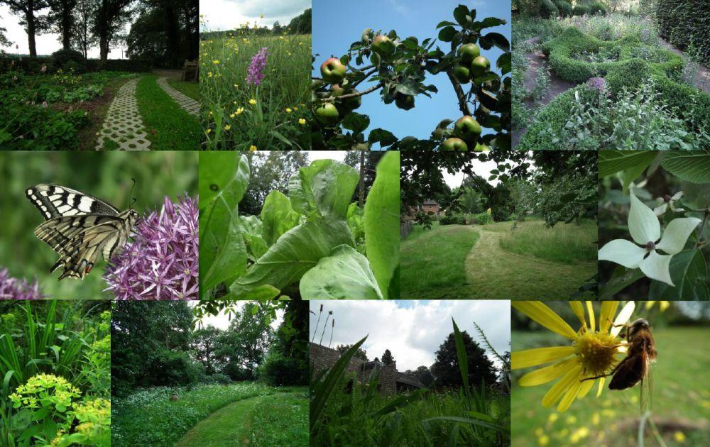Groenkundig en Plantaardig